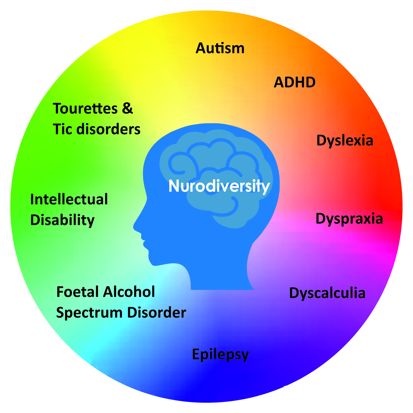 An image detailing co-occurrence and neurodiversity